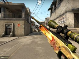 Expensive Thing in the CS GO WORLD